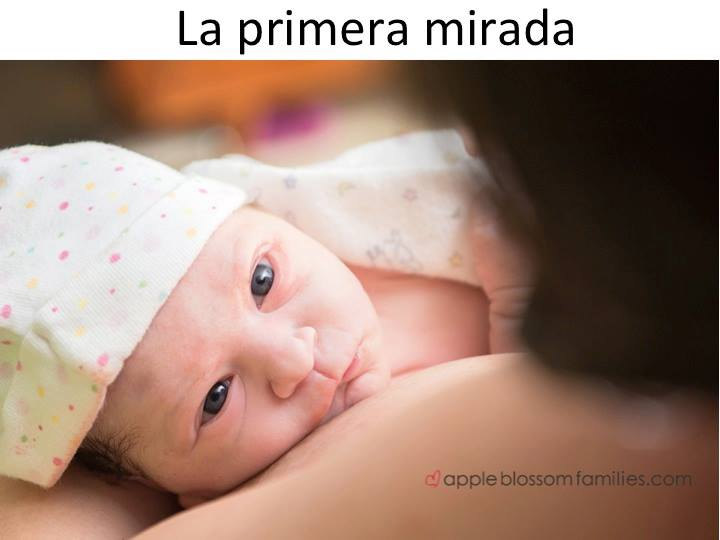 La primera mirada. Efectos conductuales de las hormonas del parto