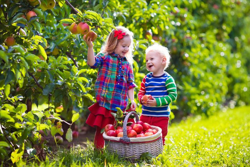 La medicalización de la infancia
