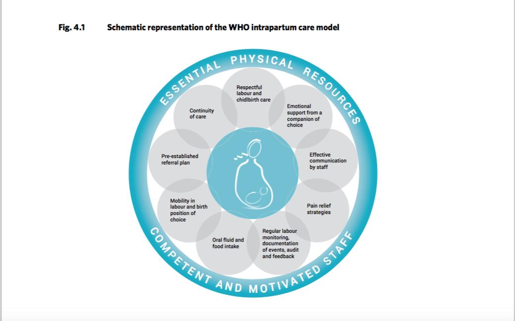 La OMS pide que se cuide la salud mental de las madres en la asistencia al parto